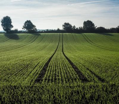 Spécialiste des travaux agricoles à Pezenas